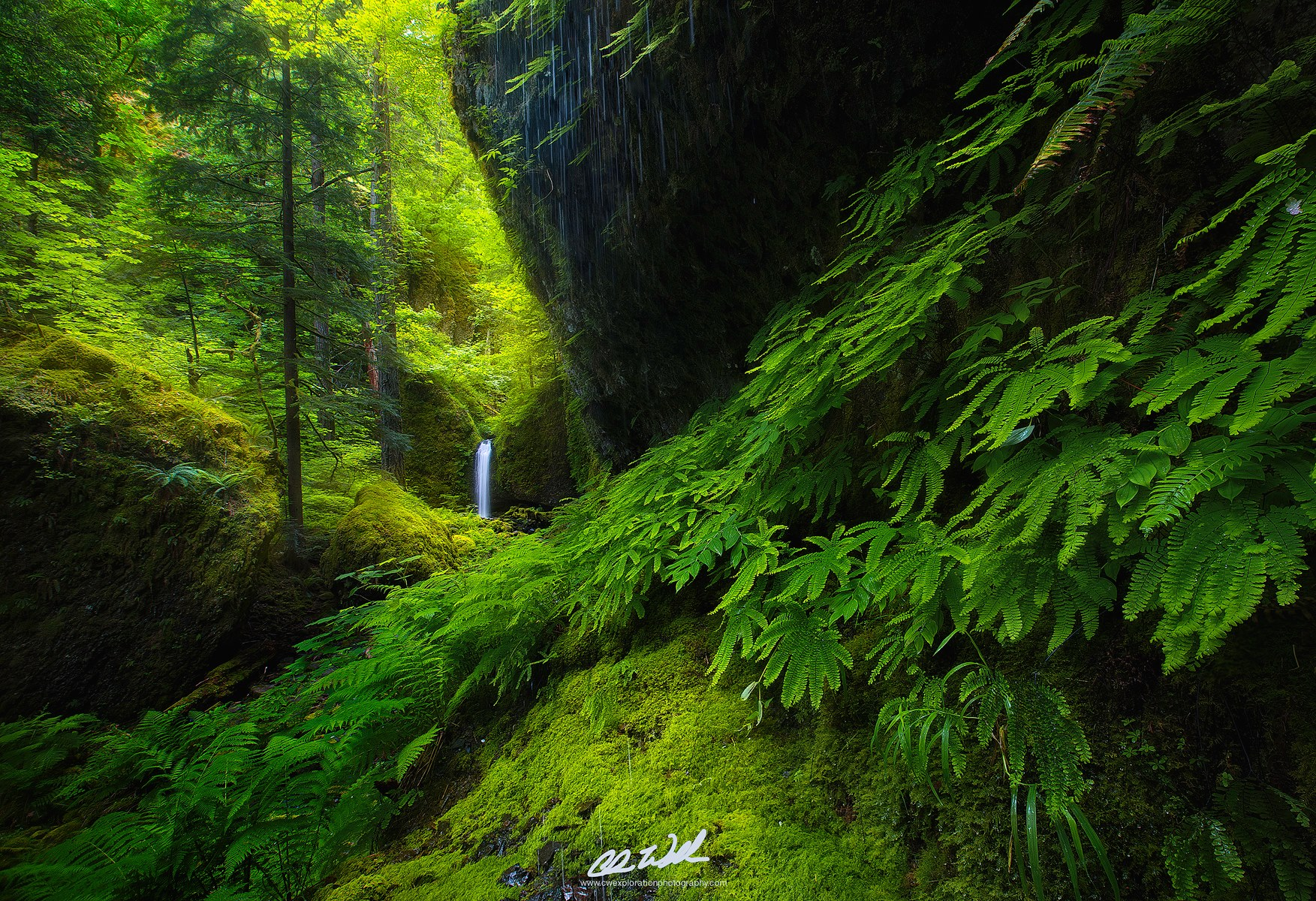 Top 15 From 2015 Pacific Northwest Landscape Photography